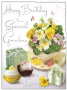 Special Grandma Birthday Card